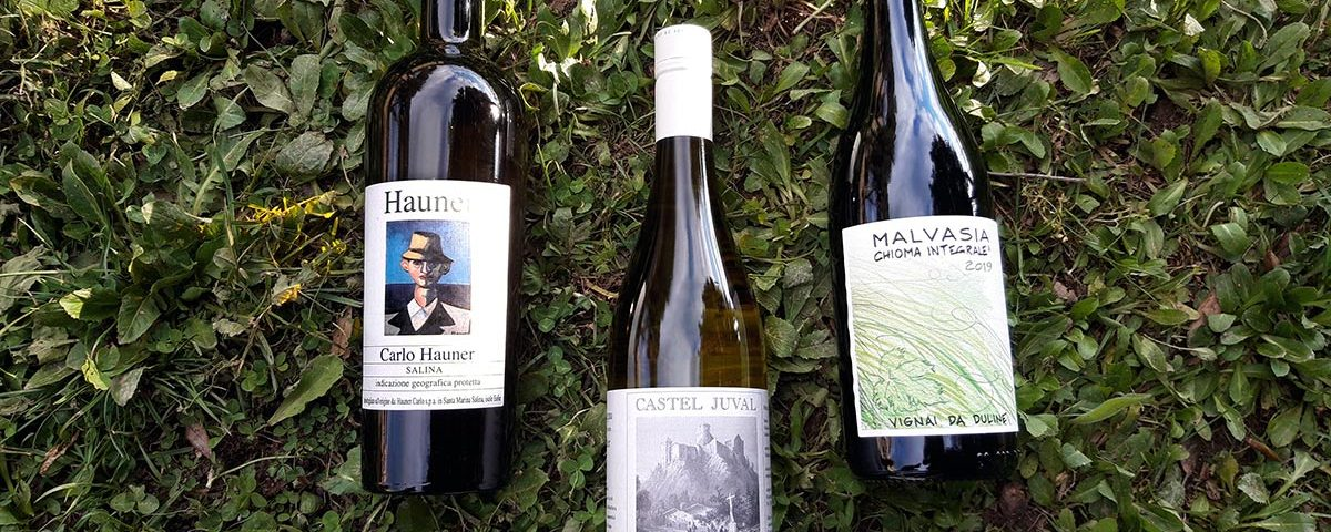 White wines for the summer to be discovered